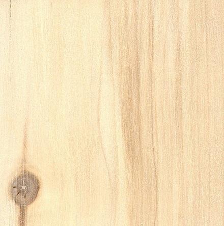 طرح چوب درخت تبریزی